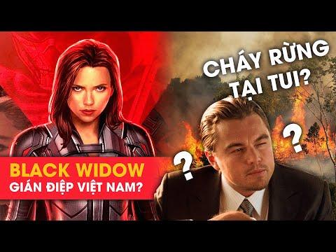 Phê Phim News: BLACK WIDOW TUNG TRAILER MỚI | SAO 'TITANIC' ĐỐT RỪNG AMAZON??