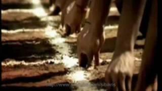 Commonwealth Games Theme Song Offcial Video, Lyrics A R Rahman Swagath -  Delhi 2010