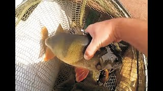 Рибалка на Хрінницькому водосховищі