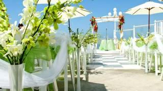 Wedding Arch - Wedding Arch Photos