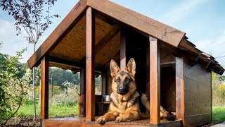 Как построить будку для овчарки своими руками?