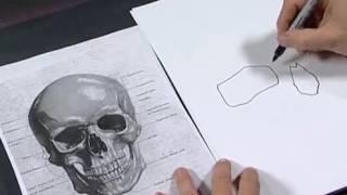 Аэрография.Рисуем череп(Чёткое описание рисования черепа аэрографом, с использованием шаблонов., 2016-08-29T10:32:53.000Z)