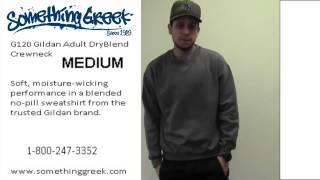 Best Selling Crewneck Gildan Sweatshirt sizing video