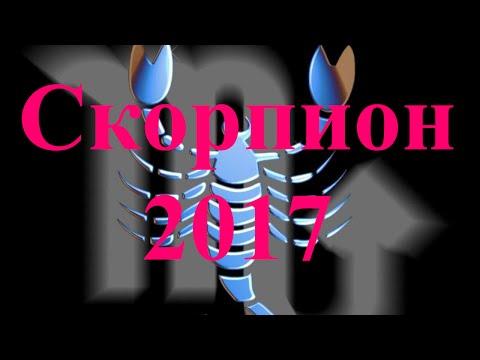 Скорпион - характеристика знака зодиака, гороскоп мужчины