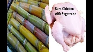 How To Cook Food in Coconut / New Ideas for Cooking / Cooking Meat in Coconut / new style of cooking