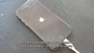 Ремонт iPhone 6(Самое интересное то что на аппарате нет ни следов ударов или падений на жёсткие поверхности, а так же изгибо..., 2016-02-15T22:07:18.000Z)