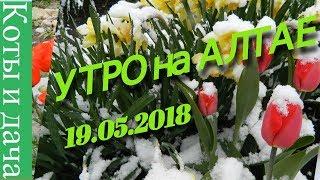 УТРО на АЛТАЕ  19мая 2018года