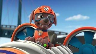 мультик щенячий патруль игра онлайн Щенки спасают капитана Палтуса #pawpatrol #kidsgame