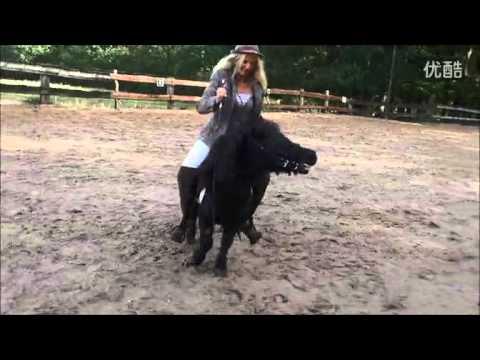 nude llama ride