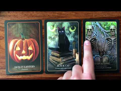 Daily Oracle Card Reading for Friday the 13th October 2017 | Gregory Scott Oracle Cards