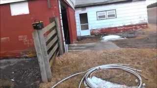 Farm Tour New Farm