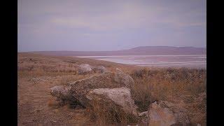 Крим. Рожеве озеро.Очікування і Реальність. Кояшське озеро, Крим