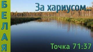 Русская Рыбалка 4- Река Белая Хариус и форель! 77гр не хватило до трофа:)