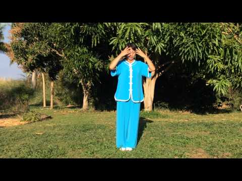 Kokolulu in Hawaii - Master Bu Xiaojing Lift Qi Up Pour Qi Down