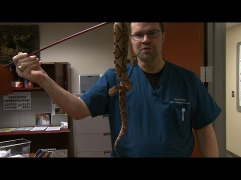 The Snake Doctor | North Carolina Science Now | UNC-TV