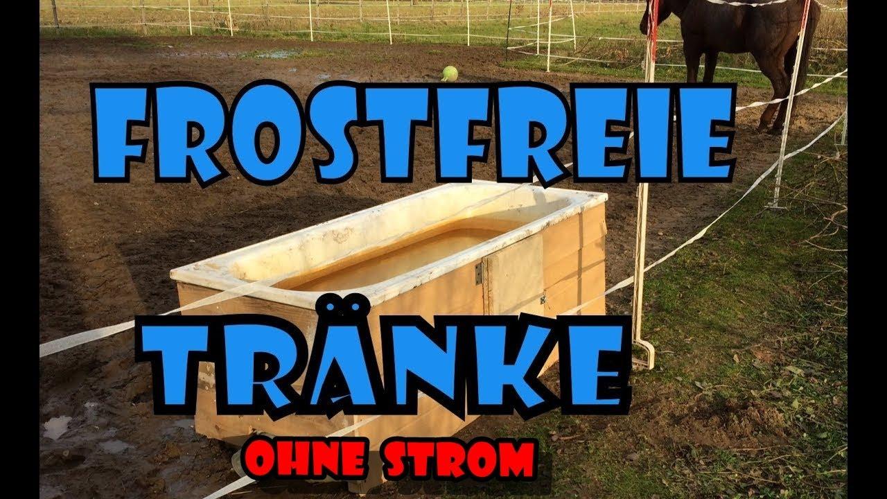 Frostfreie / frostsichere Pferdetrnke im Winter | Pferde ...