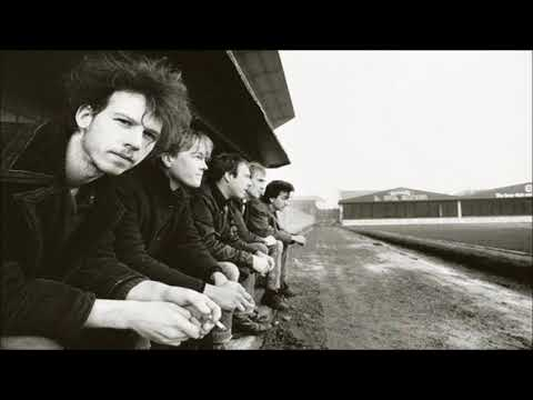 Half Man Half Biscuit - Old Tige