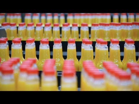 Orange Juice Production With Festo