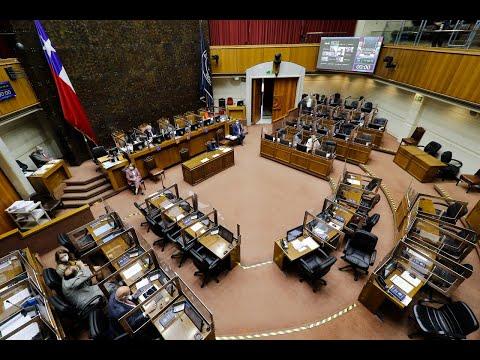 Segundo retiro del 10%: sala del Senado discute el proyecto