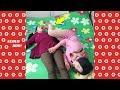 Kocak Abis Video Lucu Cina Bikin Ngakak P✦14 『video Gokil Terbaru 2019』