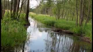 "Video 2015-1-17 NATURE VIDEO Rivers&Streams music:MOZART ""Greensleeves"" classical guitar"