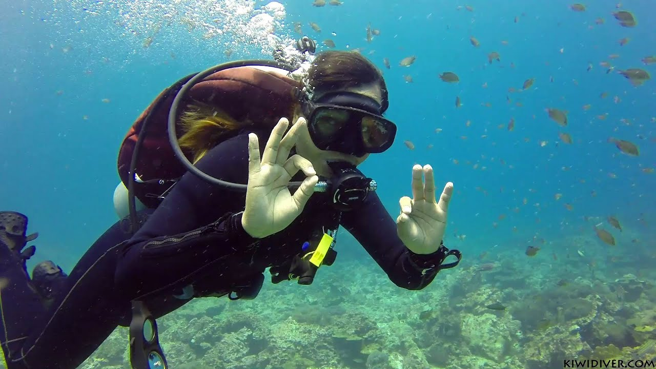 Learn To Scuba Dive In Phuket Thailand