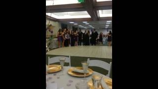 Harlem Shake Luis and Deb wedding entrance