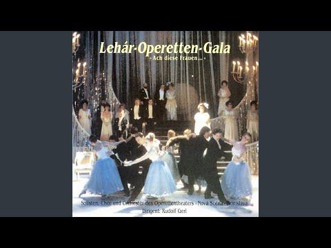 Operetten Gala - Meine Liebe, Deine Liebe (Franz Lehar) mp3