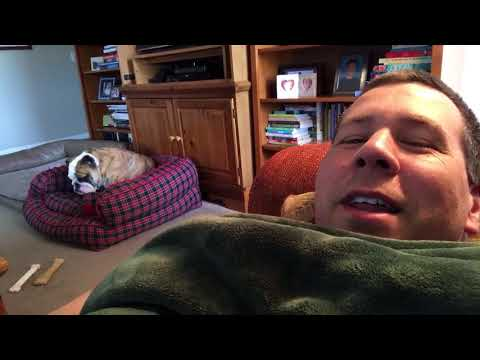 Bulldog Reacts To Owner Who Said No