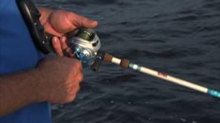 Okeechobee Bass Fishing Tackle Setup with DOA Worms