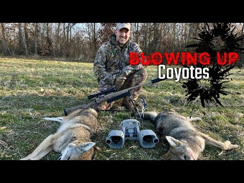 2018 Blowing Up Coyotes Hunt