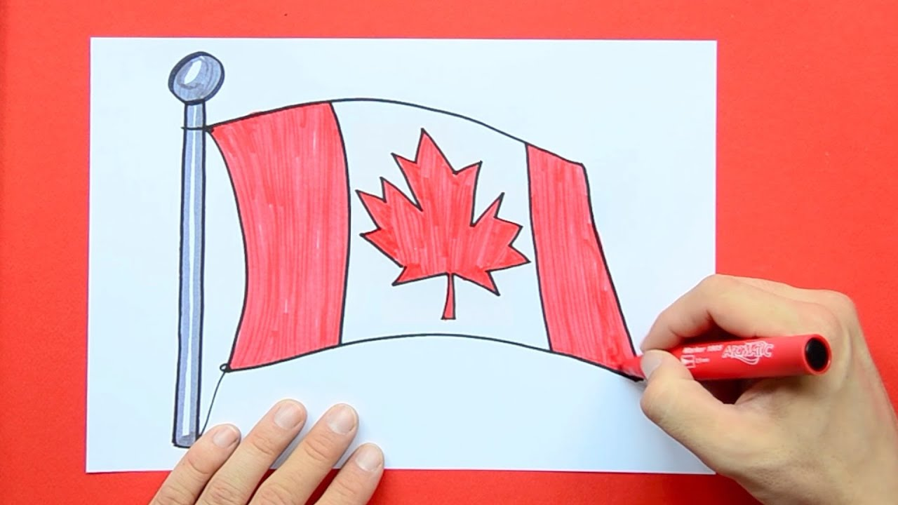 how to draw and color the national flag of canada youtube