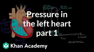Pressure in the Left Heart - Part 1