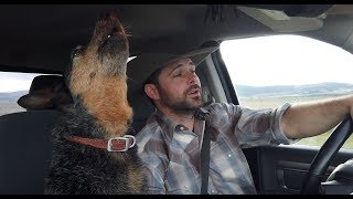 Chris and Syd. My Dog Sings Country Music, Can You Guess Her Favorite Song?