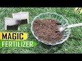 TEA WASTE FERTILIZER: Used Tea Bags Coffee Grounds for Plants | Organic Best Fertilizer for Rose