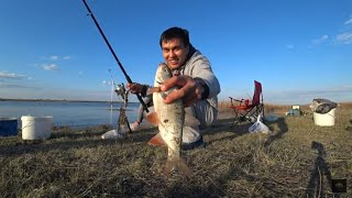 Рыбалка Весной! Сабынды! Зачетный язь! Казахстан!