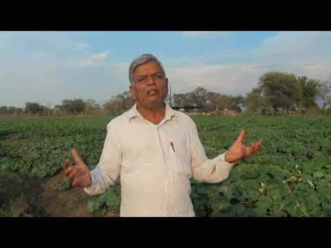 Soil Fertlity & Water Conservation by Subhash Sharma