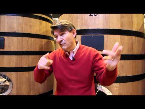 Chardonnay and Burgundy