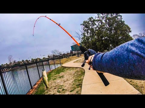 $5 WALMART ZEBCO FISHING ROD Catches All The FISH 🎣