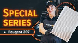 PEUGEOT 307 DIY repair - car video guide