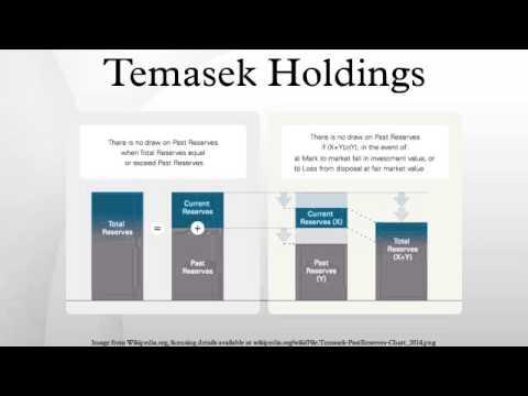 management planning at temasek holdings essay