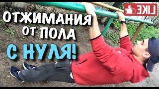 видео как научиться отжиматься