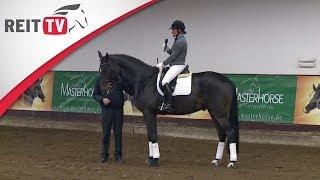 Das Pferd Richtig Warm Machen - Jean Bemelmans In Hannover Teil 1a | Die Alten Meister