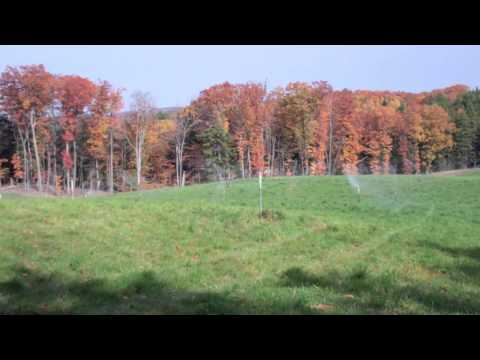 The Homestead of Glen Arbor, MI - sustainable lodging and wastewater technology