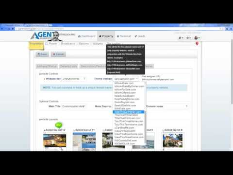 Agent Training 1/20 - Domain Names
