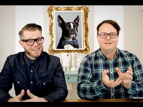 Boston Terrier Dog - Best Review