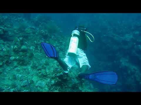 Belize 2017 0906 113819 034