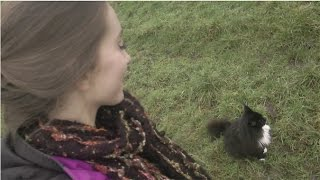ASMR - Nature walk with kitty =^.^= (Whispered + Soft-Spoken)