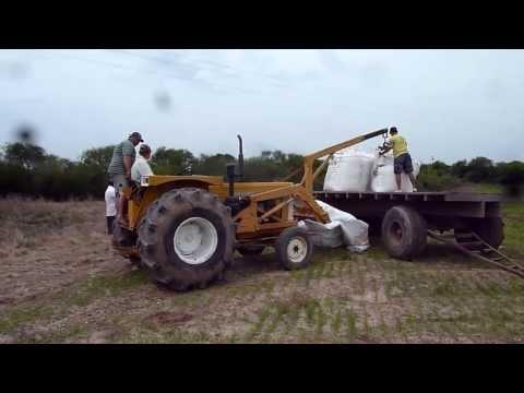 Ford 4600 Carregando Cbt 1105 Com Cama De Frango Doovi