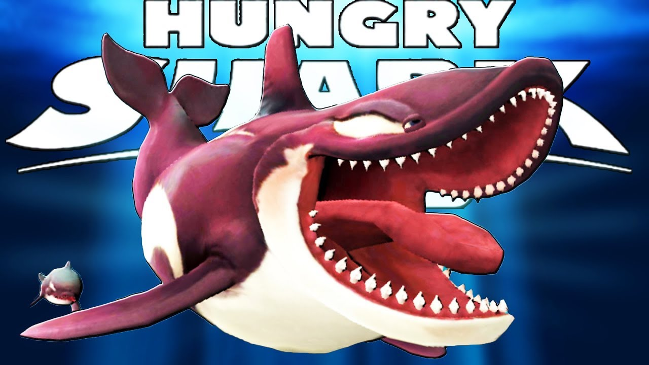 КАСАТКА ВЫХОДИТ НА ОХОТУ, ОХОТА НА АКУЛ | Hungry Shark World